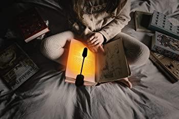 Hooga Clip-on Reading Light